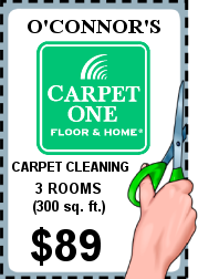 Carpet Cleaning Special 89